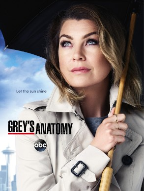 Imagen de 'Grey's Anatomy (12th season)'