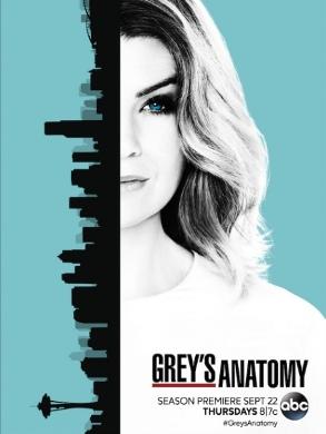 Imagen de 'Grey's Anatomy (13th season)'